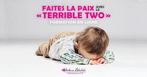 Lien web - avec _formation_ (1)